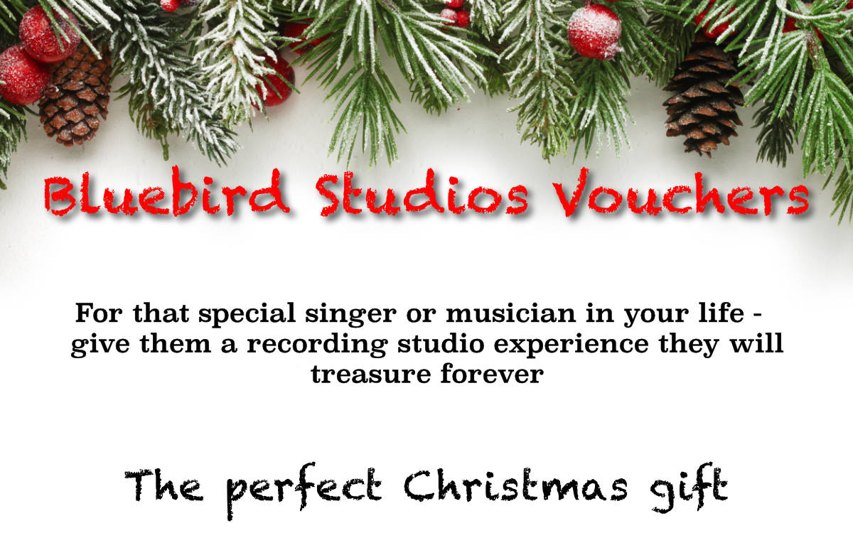 Bluebird Studios Christmas Vouchers